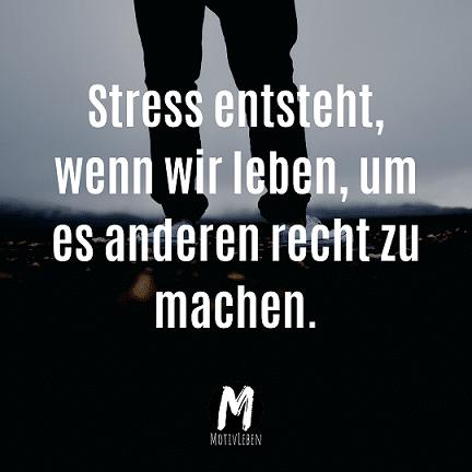 Stress entsteht, wenn wir leben, um es anderen recht zu machen. - Kopie